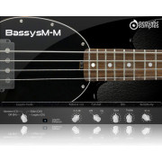 Acousticsamples Bassysm-M Library