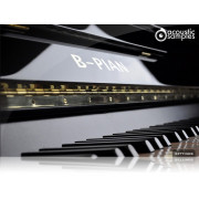 Acousticsamples B-PIAN Bad Upright Piano Library