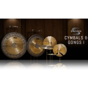 Vienna Symphonic Library Synchron Cymbals & Gongs I Standard Library