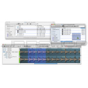 Audio Ease Snapper 2
