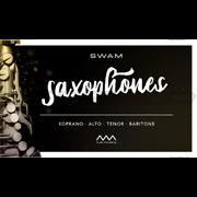 Audio Modeling SWAM Saxophones