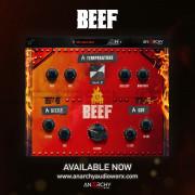 Anarchy Audioworx Beef