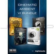 Big Fish Audio Cinematic Ambient VI Bundle