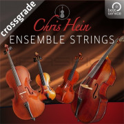 Best Service Chris Hein Ensemble Strings Crossgrade