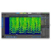 AudioSourceRE DeMIX Pro