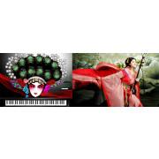 Sound Magic China Story Erhu