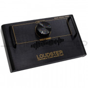 Hotone Loudster Portable Floor Power Amplifier