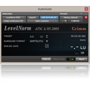 BeatRig LevelNorm Plugin