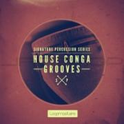 Big Fish Audio Signature Percussion - House Conga Grooves
