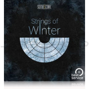 Best Service The Orchestra Strings of Winter