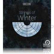 Best Service Strings of Winter